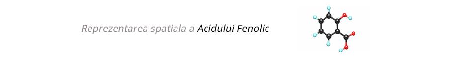 acidul_fenolic